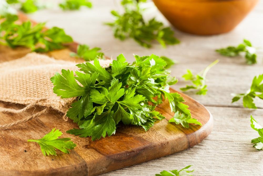 benefícios da salsa