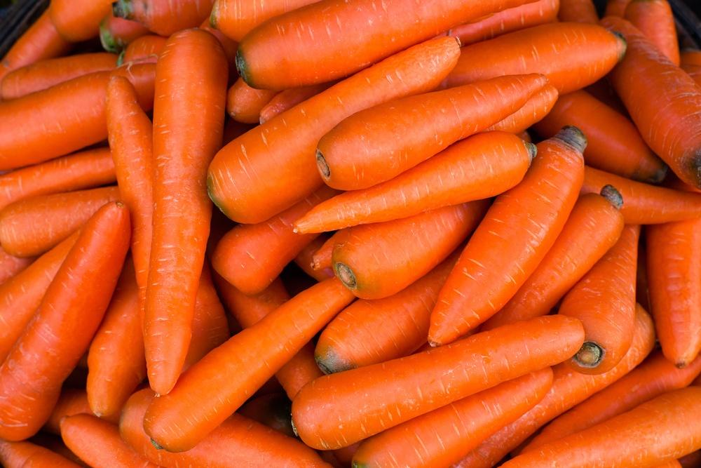 cenoura benefícios