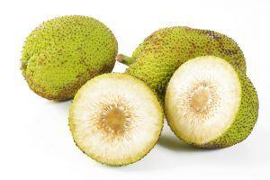 benefícios da fruta-pão