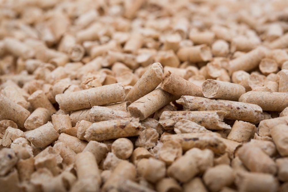 o que é biomassa