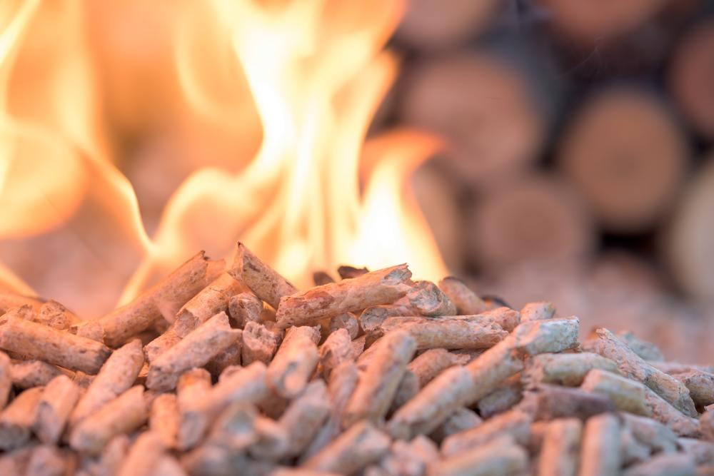vantagens da biomassa
