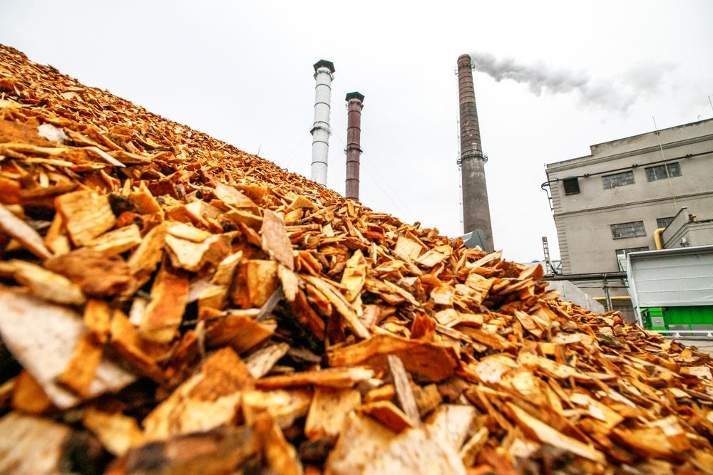 conceito de biomassa