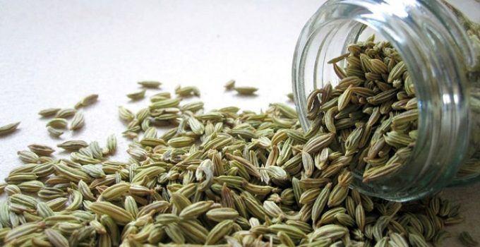 benefícios da erva doce