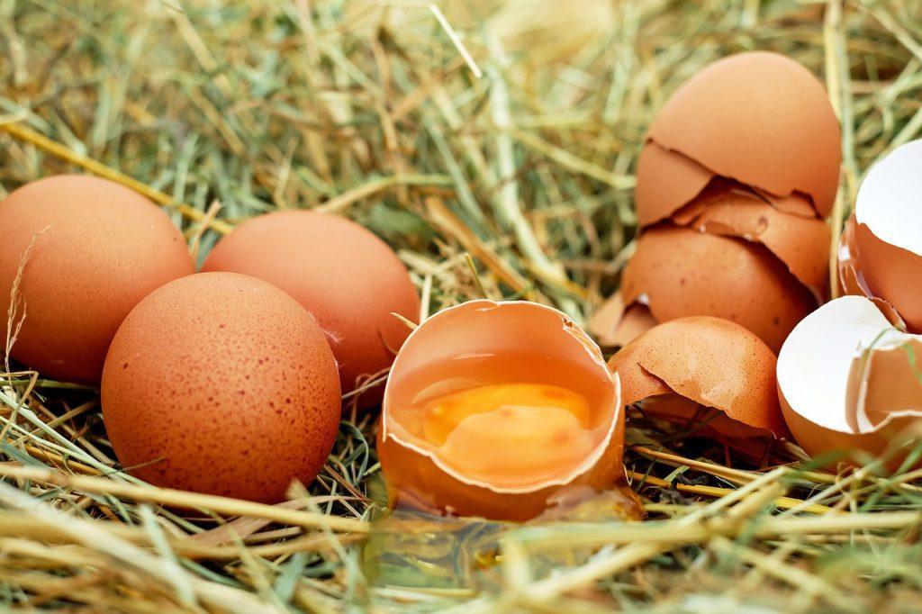 propriedades do ovo