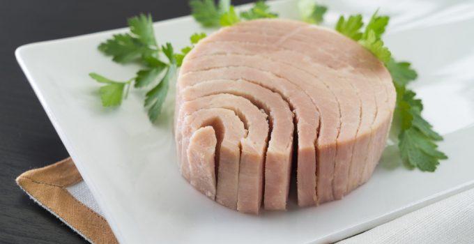 Benefícios do atum