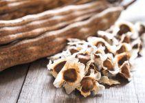 Benefícios da Semente de Moringa para a saúde