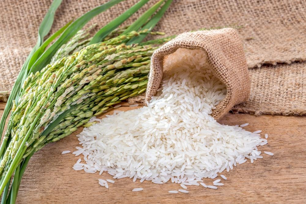 Propriedades do arroz